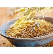 Пшеница яровая Ружичи 500 г